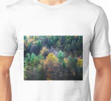 Take a Hike Autumn in Pennsylvania Unisex T-Shirt