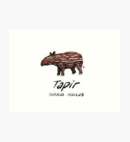 Animals of Malaysia - Baby Malayan Tapir  Art Print