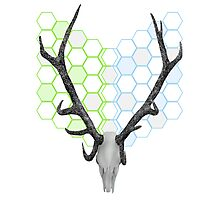 Stag Antlers Geometric Pattern Photographic Print