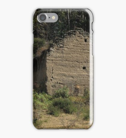 Demolished Building in a Forest iPhone Case/Skin