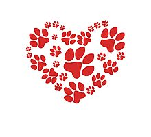 Love Paws Photographic Print