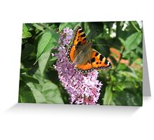 Monarch Butterfly on Lilac 2 Greeting Card