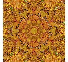 Organic Kaleidoscope Photographic Print