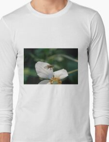 wasp on flower Long Sleeve T-Shirt