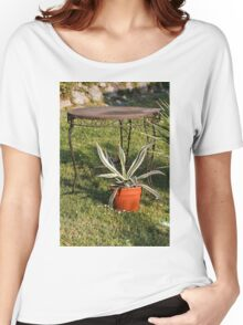 succulent plant in the garden Women's Relaxed Fit T-Shirt