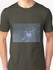 water in the fountain Unisex T-Shirt