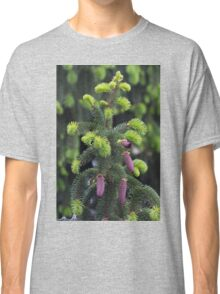 pine in the spring Classic T-Shirt
