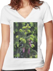 pine in the spring Women's Fitted V-Neck T-Shirt