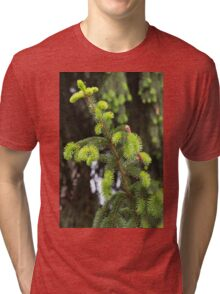 pine in the spring Tri-blend T-Shirt