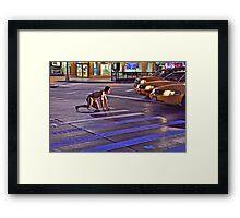 TAXI TARZAN Framed Print