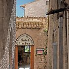 Assisi Alleyway by phil decocco
