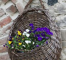 basket with flowers by spetenfia