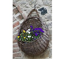 basket with flowers Photographic Print