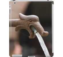 water gushing from the fountain iPad Case/Skin