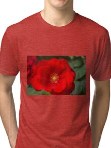 roses in the garden Tri-blend T-Shirt
