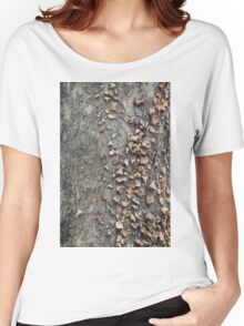 tree in spring Women's Relaxed Fit T-Shirt