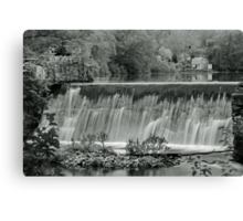Late Spring (B&W) Canvas Print