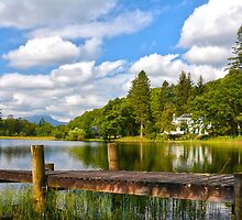 Loch Ard,Kinlochard,The Trossachs,Scotland by Jim Wilson