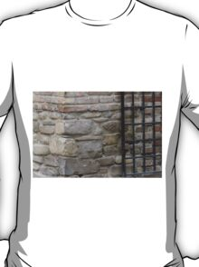 old wall T-Shirt