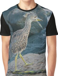 Calidris Melanotos - Pectoral Sandpiper | Fire Island, New York Graphic T-Shirt