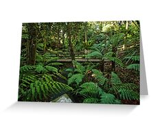 Rainforest at the National Botanic Garden in Canberra/ACT/Australia Greeting Card