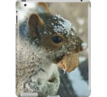 Squirrel with Brazil Nut iPad Case/Skin