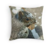 Squirrel with Brazil Nut Throw Pillow