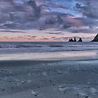 The Pastels of Vik Beach by Claire Walsh