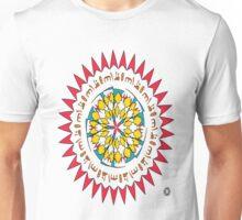 جنوب غرب ثلاثة عشر (Southwest Thirteen) Unisex T-Shirt