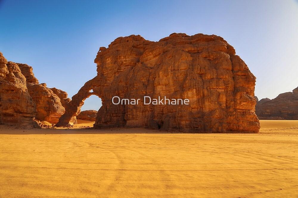 The Elephant by Omar Dakhane