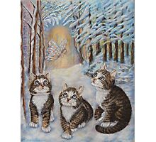 Fairy  Art - Kittens and the Snow Fairy Photographic Print