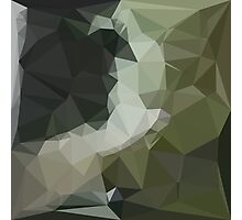 Dark Slate Gray Abstract Low Polygon Background Photographic Print