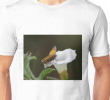 Gatekeeper Butterfly on a Convolvulus Flower  Unisex T-Shirt