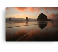 Last Photographer   Canvas Print