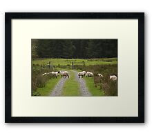 Scottish Traffic Framed Print