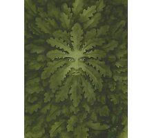 Green Man Photographic Print