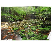 Hebe River Downstream Poster