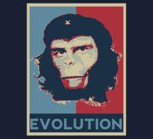 POTA - Evolution by Buleste