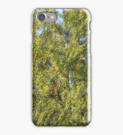Sound of Playing Birch Trees iPhone Case/Skin
