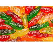 Gummy Fish Photographic Print
