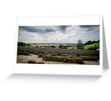 Yorkshire Lavender Pano Greeting Card