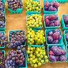Grapes & Plums by Christine Anna Wilson