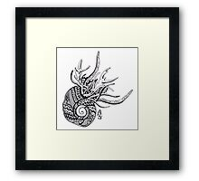 Abstract snail Framed Print