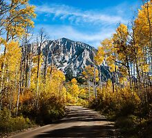 Autumn on Kebler Pass by Gary Gray