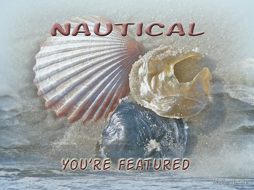Featured Banner - Nautical by MotherNature