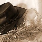 Working Cowboy's Hat... (Free State, South Africa) by Qnita