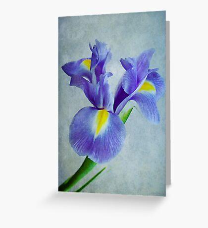 Pretty Blue  Greeting Card