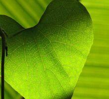 Heart Leaf Sticker
