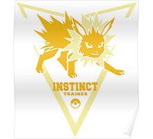 Team Instinct Trainer Poster