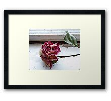 The Window Sill Framed Print